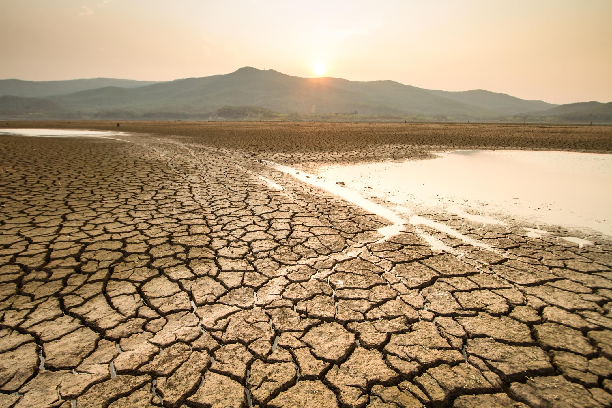 Webinar: Variaciones hidroclimáticas en Chile Central y Sur: ¿Qué nos dicen los últimos 1.000 años?